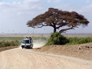 Wohnmobil mieten in Afrika