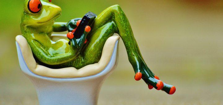 frog-1234543_1280