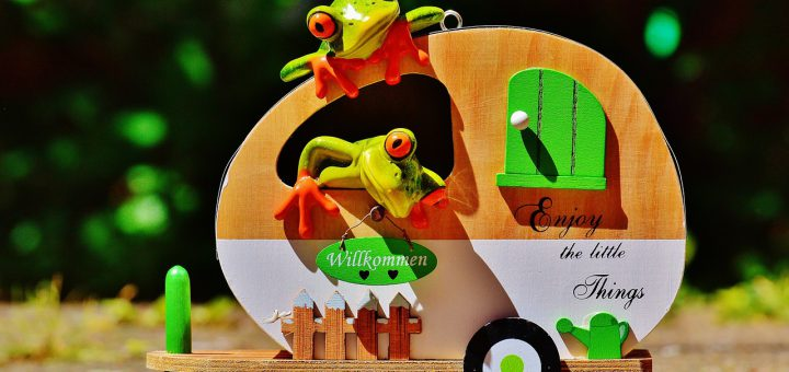 frogs-1408482_1280